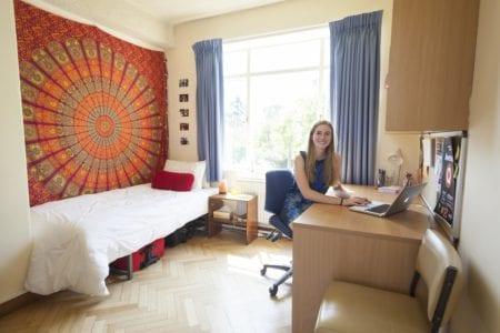 Dorm Room Desk Shelves